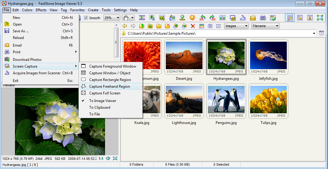 faststone image viewer download free for windows