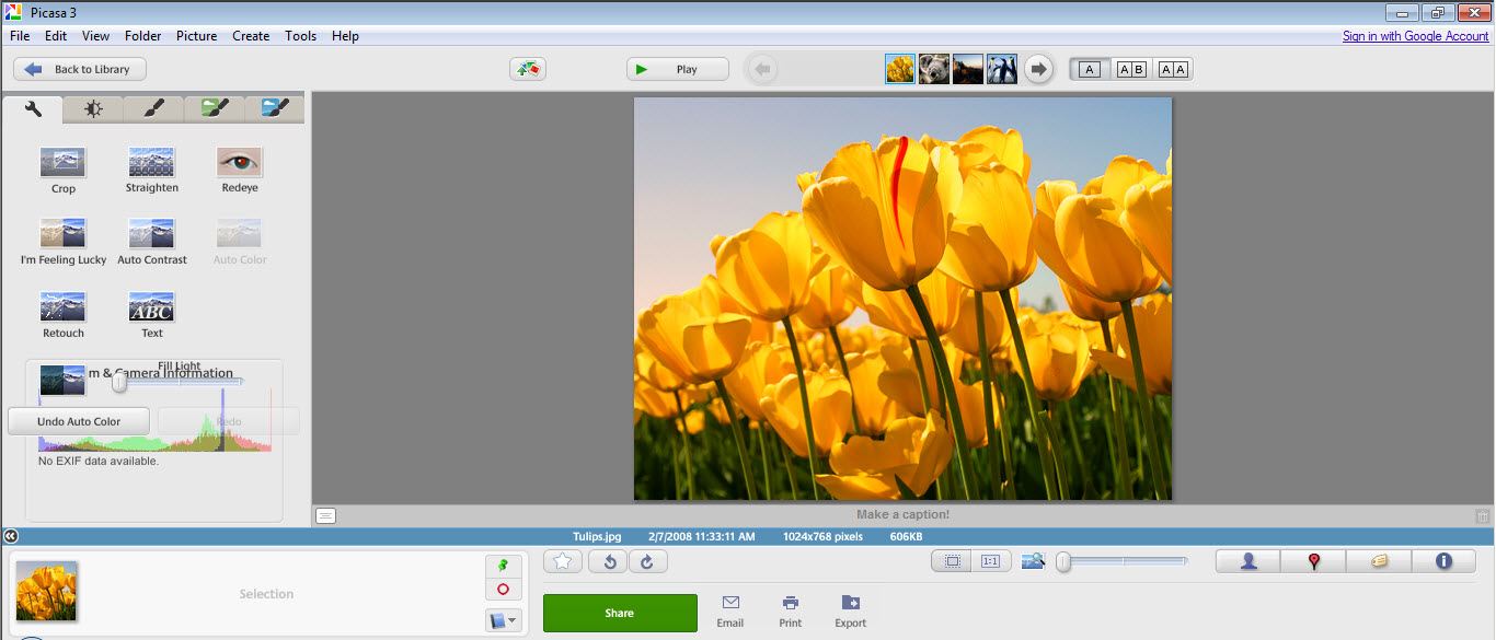 Organize edit and share your photos online using Picasa